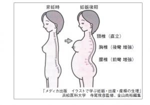 腰痛姿勢 4