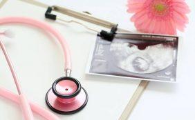 【助産師監修】お腹の中での赤ちゃんの成長~妊娠週数の数え方や赤ちゃんの様子~