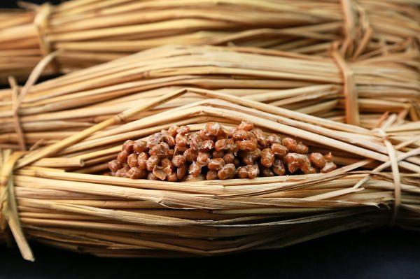初期食べ物大豆