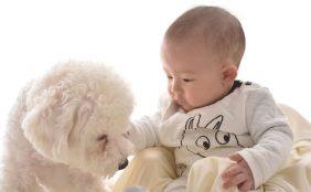 【助産師監修】赤ちゃんと犬や猫は一緒に暮らせる?メリットや気をつけるべき事について
