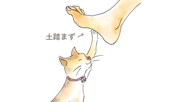 便秘_土踏まず